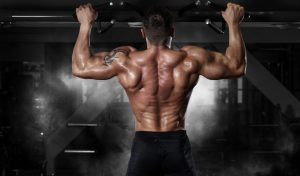How to get Muscle, Build the Ideal Male Body, and get the V-Shape